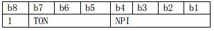 TON/NPI字节定义