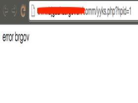 避免站点referer限制影响网站打开