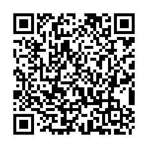 i国网官方下载地址及IOS使用设置方法